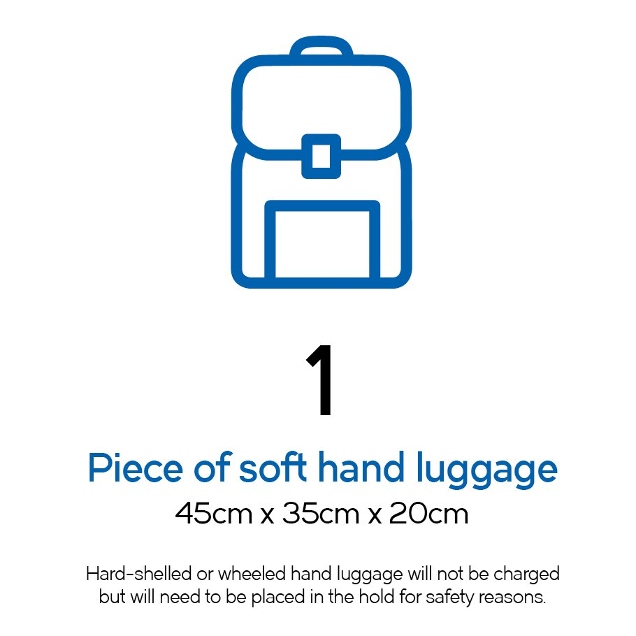 1 piece of soft hand luggage